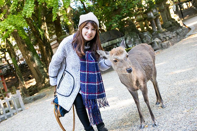 【遊記】 日本 奈良 春日大社 斑鳩一日券搭近鐵電車、奈良公車來去找鹿兒拍照玩耍!