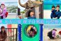 [必看] 沖繩 七天六夜親子自駕遊懶人包  景點美食行程規劃|機票飯店租車花費分享!
